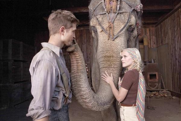 De l'eau pour les éléphants